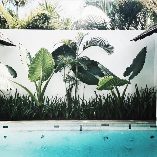 Pool inspiration  Villa Astana Kunti Seminyak Bali newbuild newhousehellip
